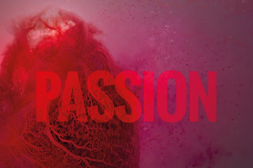 The Future of Demonstration, Season 2: PASSION