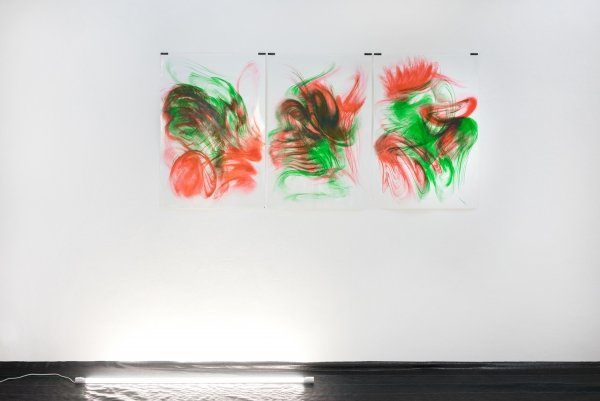 Maria VMier, Untitled [scarlet, sapgreen], 2019, Indian ink on chromolux, 70 x 100 cm